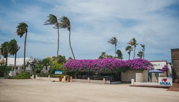 Our Location Aruba Beach Villas